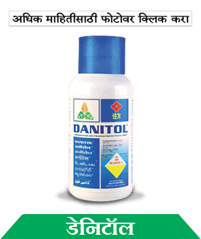 know about sumitomo danitol in marathi
