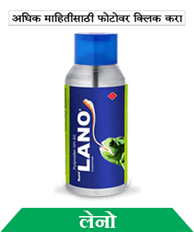know about sumitomo lano in marathi