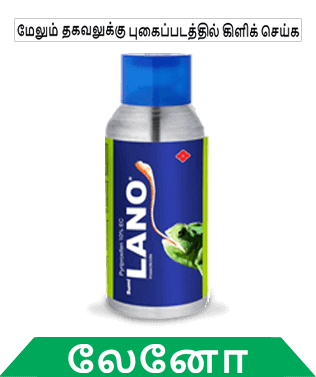 know about sumitomo lano in tamil