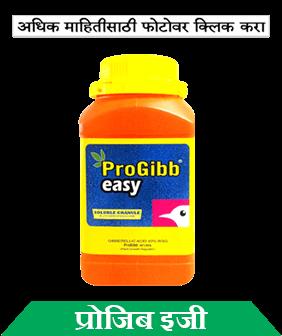 know about sumitomo progibb easy in marathi