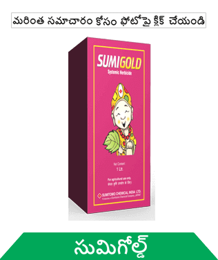 know about sumitomo sumigold in telugu